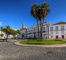 Arco da Vila by manateevoyager