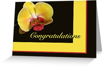 Congratulations Greeting Card - Yellow Moth Orchid by MotherNature