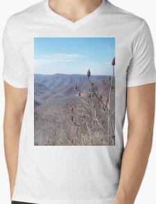 Scenic Appalachian Mountains Overlook Mens V-Neck T-Shirt