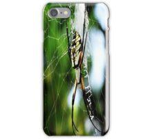 Spider iPhone Case/Skin