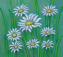 white daisies by thuraya o