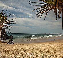 Dreamtime Beach Fingal Head by Ron Finkel