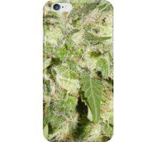 Green Bud iPhone Case/Skin