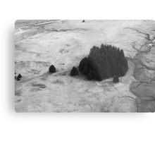 Alaskan Trees Ariel  Metal Print