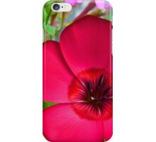 Scarlet Flax I-phone Case iPhone Case/Skin