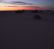 Before sunrise at Lake Mungo, Australia by Carole-Anne