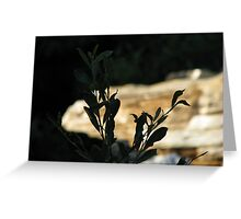 Black Leaves at Bear Creek Greeting Card