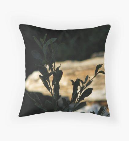 Black Leaves at Bear Creek Throw Pillow