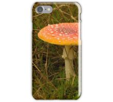 Herald of Fall iPhone Case/Skin