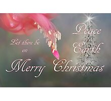 Let There Be Peace on Earth Photographic Print