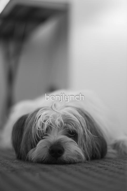 Boris by benjlynch