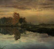 Early Morning Mist  by Irene  Burdell