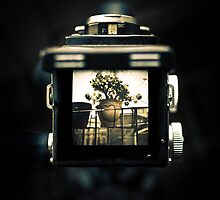 A look through the viewfinder of a Yashica D by Mirko Chessari