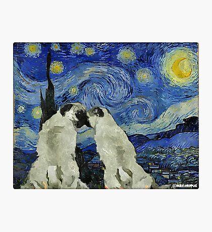 Starry Night Pugs Photographic Print