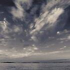 Dusk over harbour  by Phillip Shannon