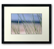 Beach grass abstract Framed Print