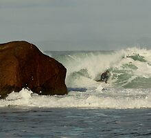 Surfer beside jaws by tonyredto