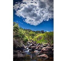 John Forrest National Park // 1 Photographic Print