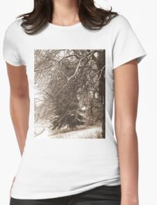 Winter Storm Montana  Womens Fitted T-Shirt
