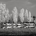 Boats and Frost in Monochrome by Ari Salmela