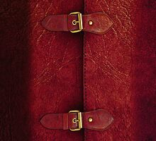 Red Leather Satchel by Alisdair Binning