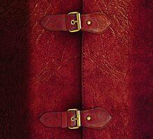 Red Leather Satchel by Alisdair Binning