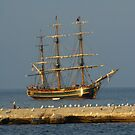 HMS Bounty by sternbergimages