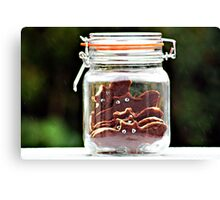 bats in a jar... Canvas Print