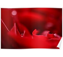 sails in a red sea Poster