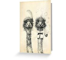 Mr. and Mrs. Ostrich Greeting Card