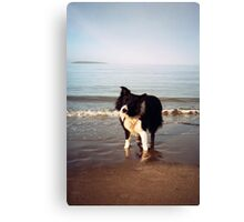 A paddle with Indy Canvas Print