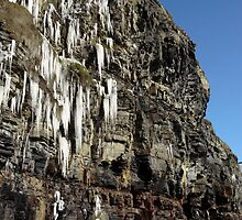 thawing cascade of icicles on a cliff face by morrbyte