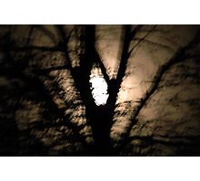 Hand Held By Moonlight .. 2 Photographic Print