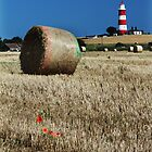 Happisburgh lighthouse by Mark Bunning