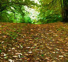 Autumnal Tumble by Don Schwartz
