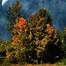Jewelled Sky by RC deWinter