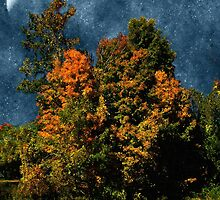 Jewelled Sky by RC deWinter