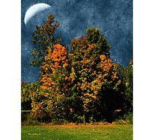 Jewelled Sky Photographic Print