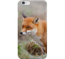 Frosty fox iPhone Case/Skin