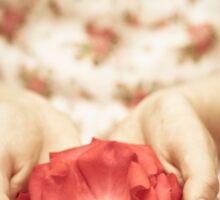 Rose in her hands Sticker