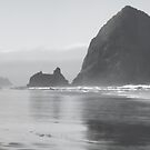 Morning at Haystack Rock by Don Schwartz