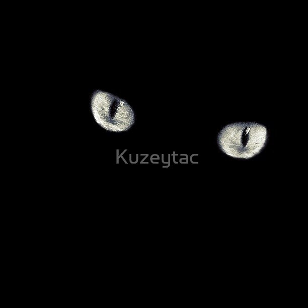 Looking At You by Kuzeytac