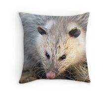 virginia opossum Throw Pillow