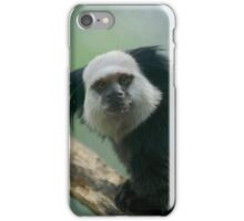 A marmoset rests on the branch iPhone Case/Skin