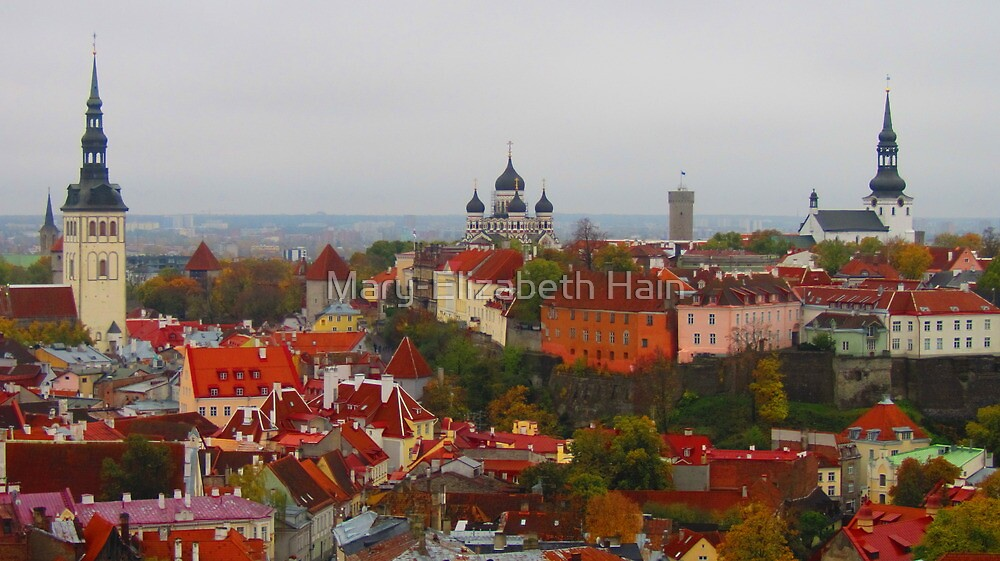 Atop Turreted Tallinn by M-EK