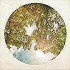 Trees 3 by Mareike Böhmer