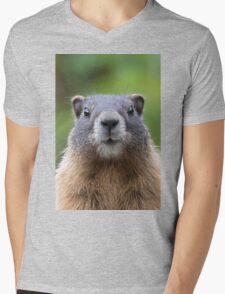 Marmot Mens V-Neck T-Shirt