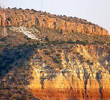 Hillside T by skyhat