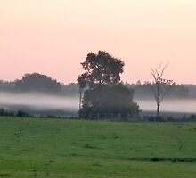 Fog Line by skyhat