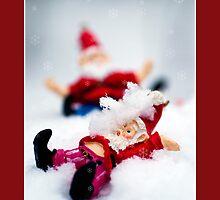 Ooooops! Merry Christmas! by marina63